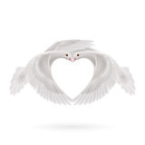 Sweethearts. Two white doves makes the shape of the wings of the heart Royalty Free Stock Photo