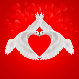 Sweethearts. Two white doves the shape of the wings of the red heart Stock Image