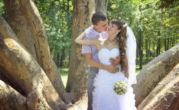 Sweethearts. Young newlyweds embracing in the park in the shadow of giant platan Royalty Free Stock Photo