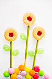 Sweetmeat and Candy flower. Sweetmeat and Candy orderly as flower Royalty Free Stock Photography