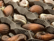 Sweets in a box. Chocolate candies in a box in form marine animals Stock Photo