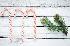 Sweets and conifer Royalty Free Stock Photo