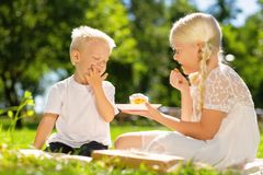 Cute brother and sister eating a cake in the park royalty free stock photo