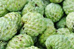 Sweetsop Royalty Free Stock Photo