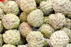 Sweetsop Stock Photography