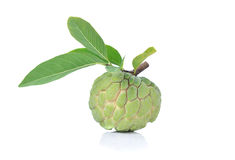 Sweetsop do Annona fotos de stock