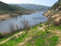 sweetwater för resevoir för cleveland skog nationell Arkivbild