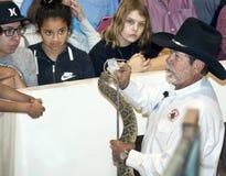 Sweetwater, Texas Rattlesnake Roundup Stockbild