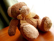 Sweety plushy bear Stock Images