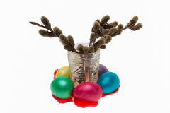 Swelling buds in a glass and Easter eggs, isolated Stock Images