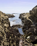 Swelling tide pools Royalty Free Stock Photography