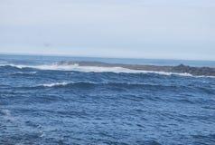 swells Fotografia Stock Libera da Diritti