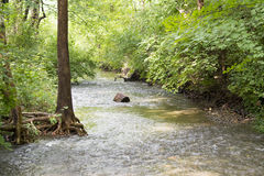 Swept up. A log is swept up by a river in Ohio.  The river carries it downstream to unknown places Stock Photo