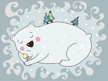 Swetty polar bear Stock Images