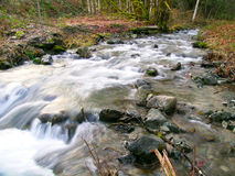 Swift Creek. Fast moving stream flowing through the forest stock photo
