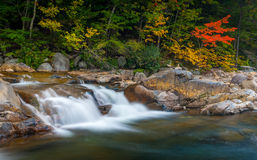 Swift Lower Falls
