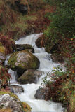 Swift mountain stream Stock Photo