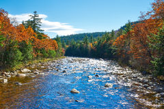 Swift River at autumn Royalty Free Stock Photo