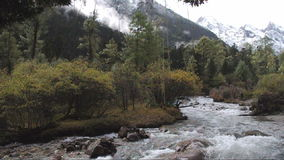 Swift river stock footage