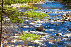 Swift River in White Mountain National Forest Royalty Free Stock Image