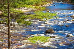 Swift River in White Mountain National Forest Royalty Free Stock Photo