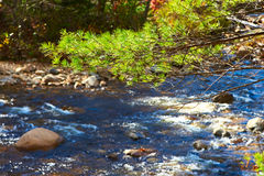 Swift River in White Mountain National Forest Stock Photography