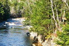 Swift River in White Mountain National Forest Stock Images