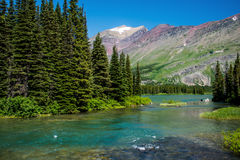 Into swiftcurrent lake Royalty Free Stock Photo
