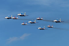 Swifts (Strizhi) and Russian Knights Royalty Free Stock Image