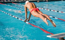 swim выпускных экзаменов Стоковые Изображения RF