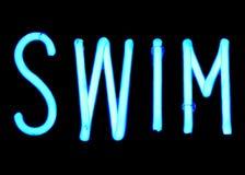 Swim. Neon sign royalty free stock photo
