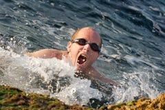 Swim royalty free stock photo