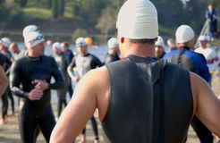 Swim. A man in a triathlon Stock Photography