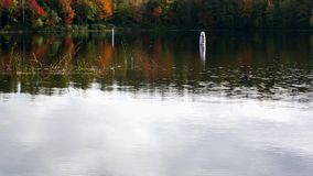 Swim buoys at Norton Pond, Maine. Video of two swim buoys floating at Norton Pond in Lincolnville, Maine with fall foliage reflecting off the rippling water stock video footage