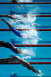 Swim dive start 01. Women dive into the pool at the start of a swimming race royalty free stock photo