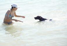 Swim with dog Stock Photos