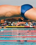 Swim Finals Royalty Free Stock Images
