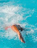 Swim Finals Stock Images