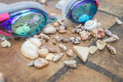 Swim goggles with sea shells after rain Stock Photography