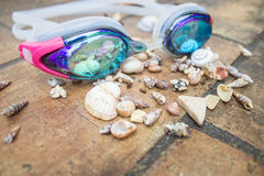 Swim goggles with sea shells after rain Stock Photos