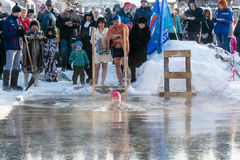 The swim in the icy water, 24 January 2016. Royalty Free Stock Images