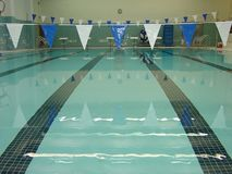 Before the Swim Meet. An indoor pool in a public institution Stock Images