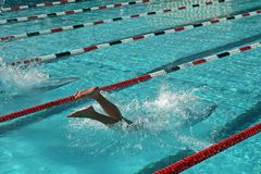 Swim Meet. A high school swim meet and the athletes who compete for their school Royalty Free Stock Photography