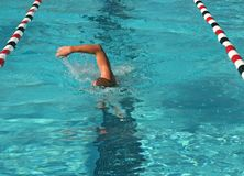 Swim Meet Royalty Free Stock Images