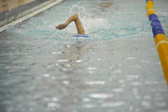 Swim meet competition. Female swimmer racing in pool lane Stock Images