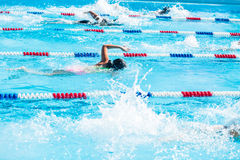 Swim meet Royalty Free Stock Photography