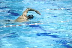 Swim pool. Young healthy with muscular body man swim on swimming pool and representing healthy and recreation concept stock photo