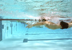 Swim Practice Royalty Free Stock Images