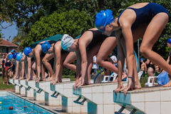 Swim Race Girls Start Royalty Free Stock Photo