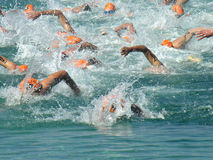 Swim racing at Triathlon Royalty Free Stock Photos